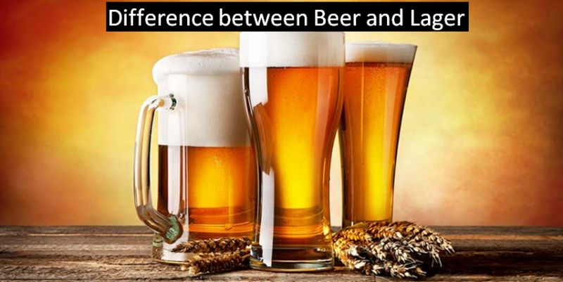 Difference between Beer and Lager